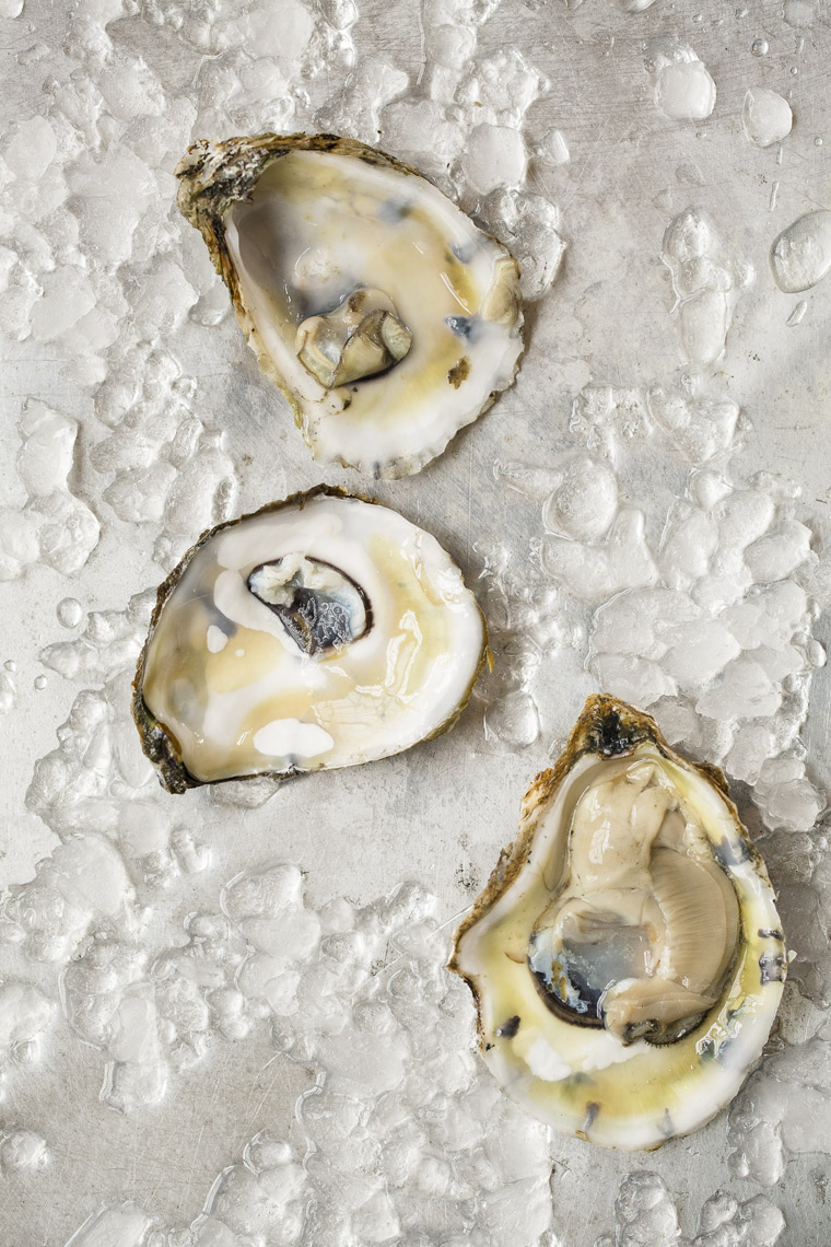 1020Post_Oysters-0068 Food photography of oysters by Julie Bidwell In Connecticut.